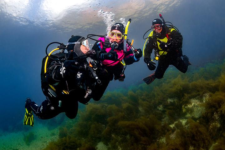 PADI droogpak specialty (Dry Suit Diver)