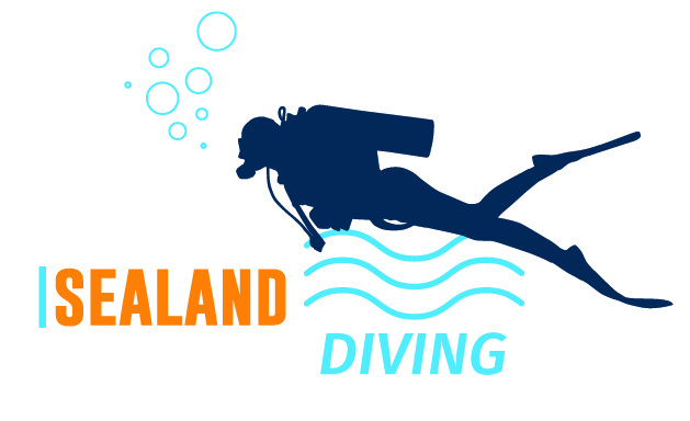 Picture of Sealand Diving Ouddorp